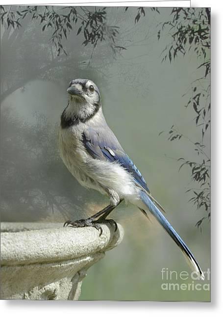 Wings In My Dreams Greeting Card