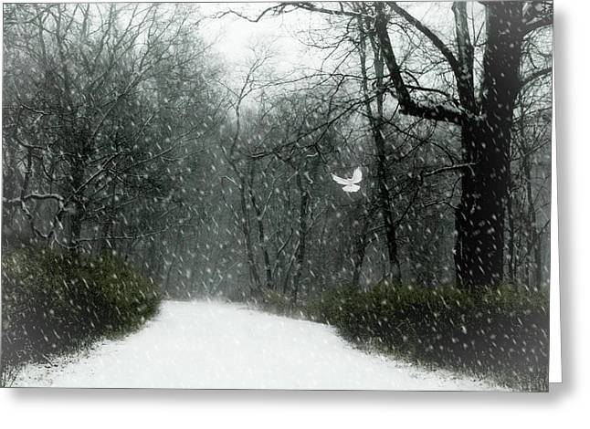 Wings Of Winter Greeting Card by Diana Angstadt