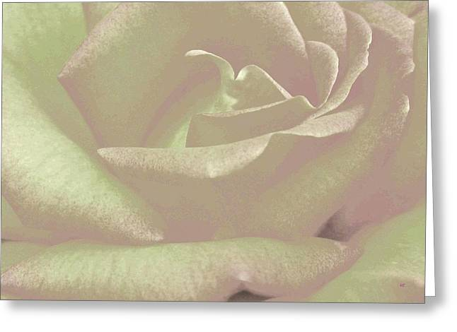 Winsome Rose 2 Greeting Card