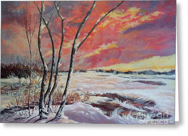 Winter Across The Lake  Greeting Card