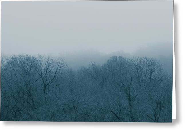 Winter Afternoon Greeting Card