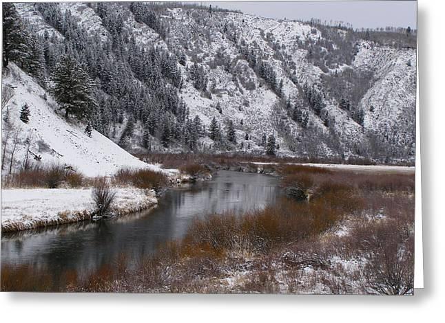 Greeting Card featuring the photograph Winter Along The Salt by DeeLon Merritt