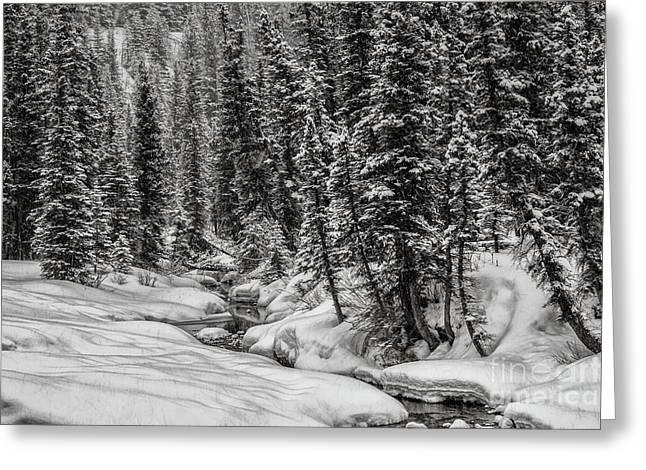 Winter Alpine Creek II Greeting Card