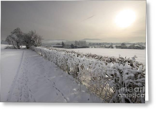 Winter Greeting Card by Angel  Tarantella
