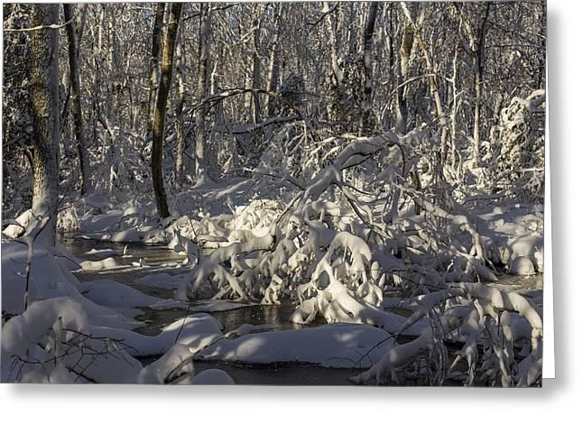 Winter At Borden Brook Greeting Card