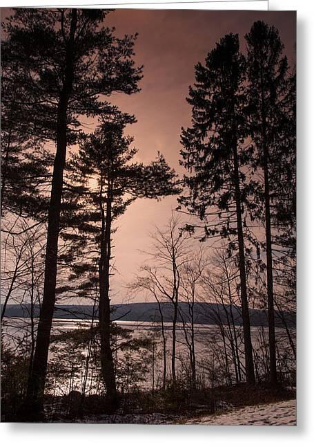 Winter At Nepaug Greeting Card by Karol Livote