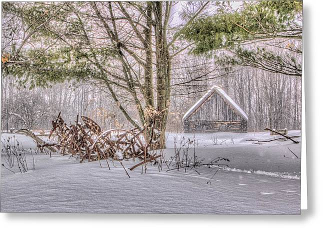 Winter At The Woods Greeting Card