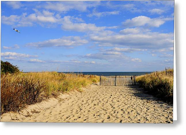 Winter Beach Sky Greeting Card by JoAnn Lense