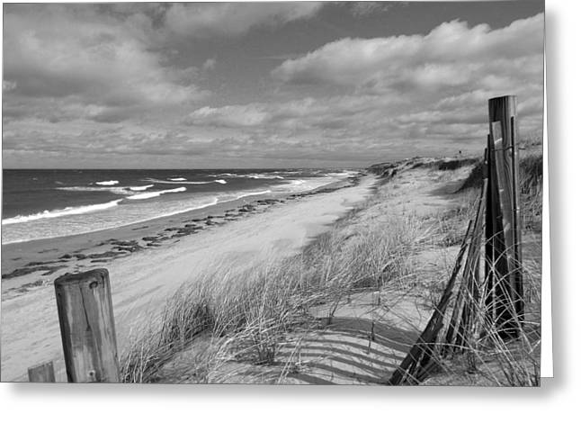 Winter Beach View - Black And White Greeting Card by Dianne Cowen