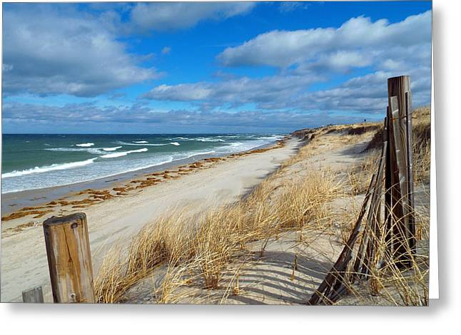 Winter Beach View Greeting Card by Dianne Cowen
