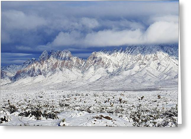 Winter Beauties Organ Mountains Greeting Card by Kurt Van Wagner