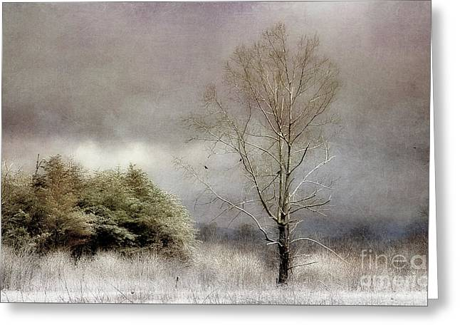 Winter Beginning Greeting Card by Michael Eingle