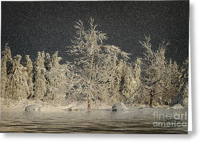 Snow On Trees Greeting Cards - Winter Begins Greeting Card by Lois Bryan
