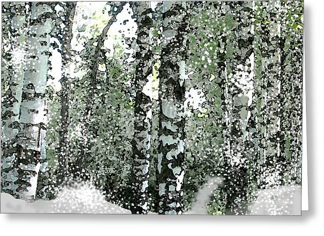 Winter Birches Greeting Card by Walter Chamberlain