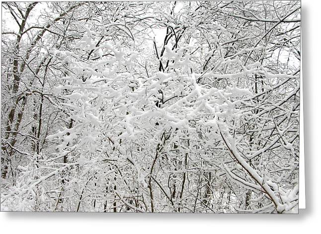 Winter Blanket Greeting Card by Martie DAndrea