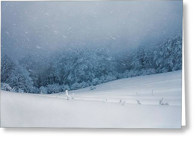 Winter Blizzard Greeting Card by Evgeni Dinev