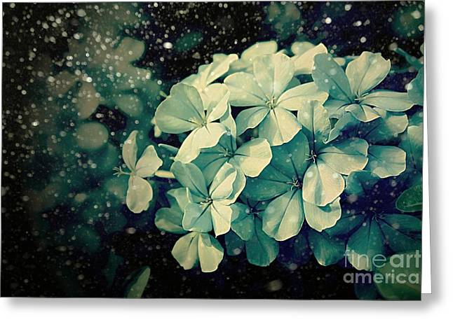 Winter Blues Greeting Card by Clare Bevan