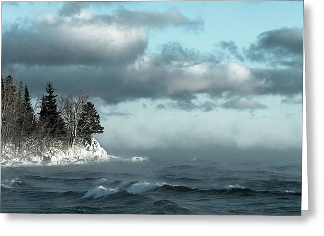 Greeting Card featuring the photograph Winter Blues by Mary Amerman