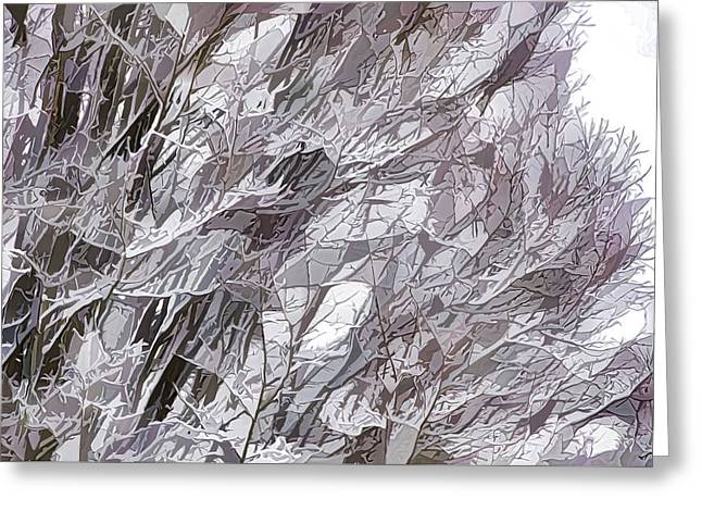 Winter Branches 1 Greeting Card by Lanjee Chee