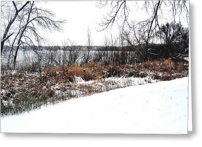 Winter By The Lake II Greeting Card by David Ritsema
