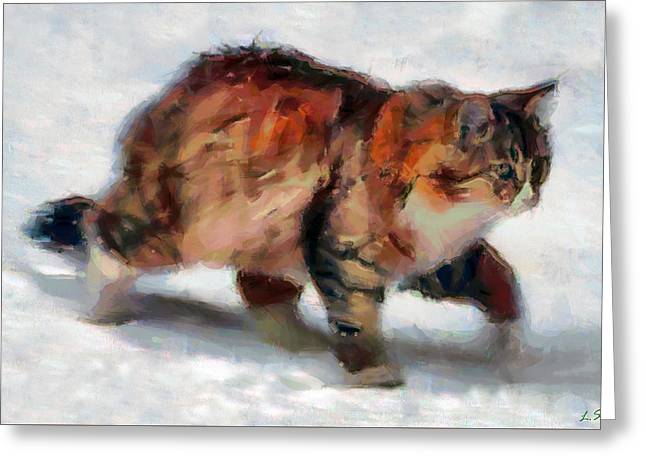 Winter Cat Greeting Card by Sergey Lukashin