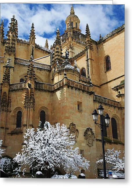 Winter Cathedral Greeting Card