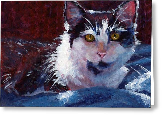 Golden Eyes Greeting Cards - Winter Comfort Greeting Card by Pat Burns