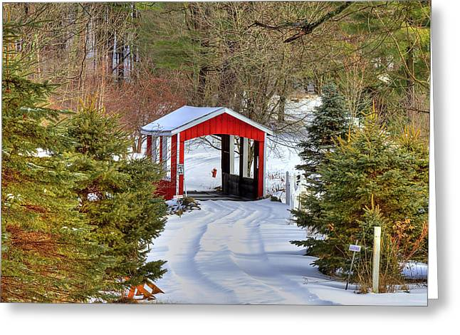 Covered Bridges Greeting Cards - Winter Crossing Greeting Card by Evelina Kremsdorf