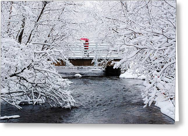 Winter Crossing Greeting Card by Ron Day