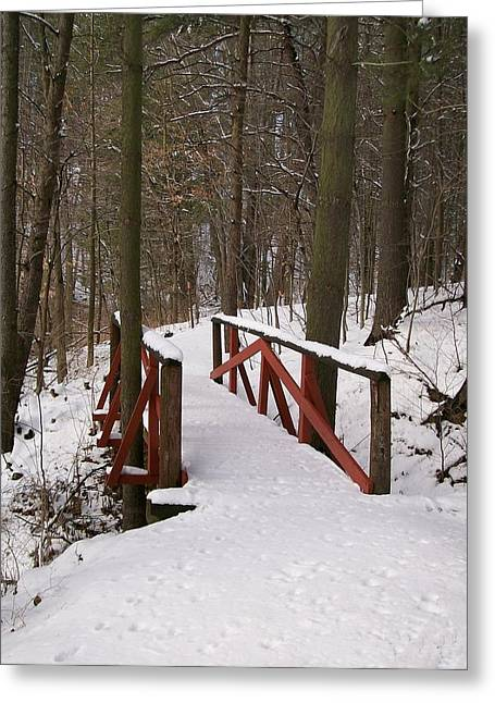Greeting Card featuring the photograph Winter Crossing by Sara  Raber