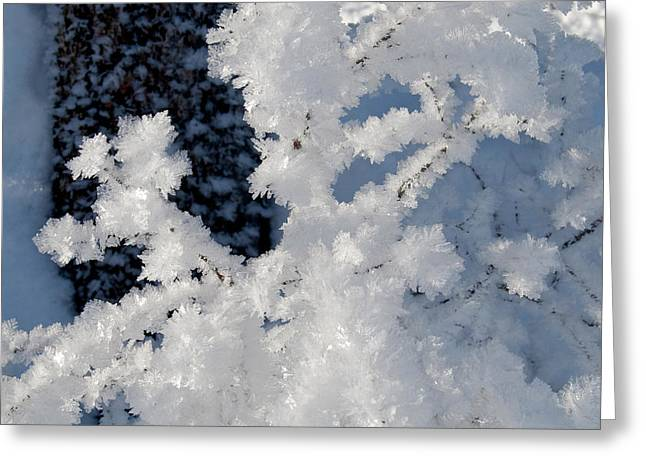 Winter Crystal Greeting Card