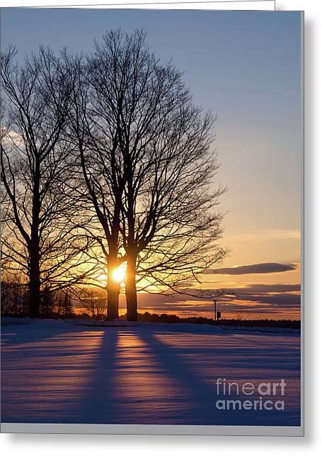 Winter, Crystal Spring Farm, Brunswick, Maine -78592 Greeting Card