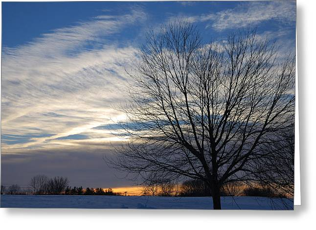 Greeting Card featuring the photograph Winter Dawn by Steven Richman
