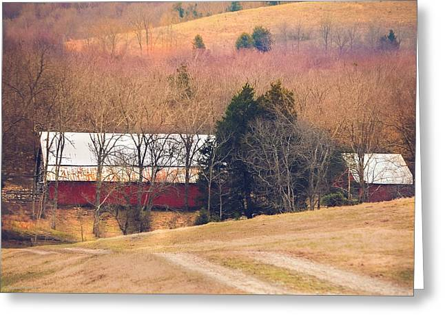 Winter Day On A Tennessee Farm Greeting Card by Debbie Karnes