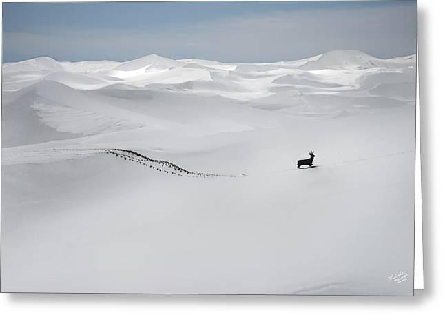 Winter Deer Greeting Card by Leland D Howard