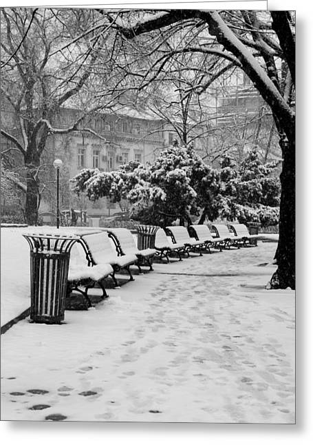 Winter Down The Path Greeting Card by Rae Tucker