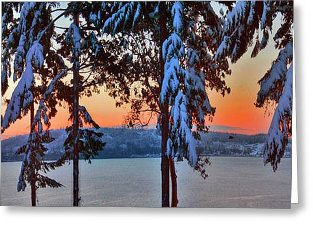 Winter Drama Sunrise Panorama Greeting Card by Mary Gaines