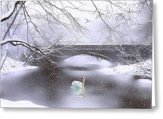 Winter Dreaming Greeting Card by Jessica Jenney