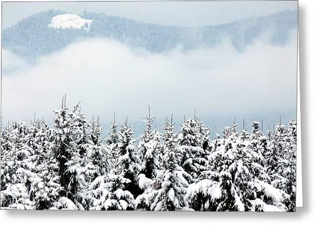 Winter Dreamworld Greeting Card