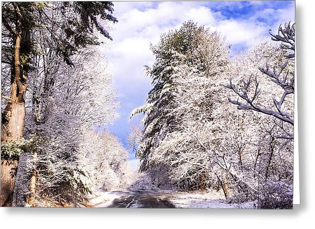 Winter Drive Greeting Card