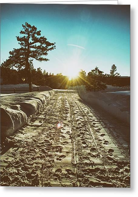 Winter Driveway Sunset Greeting Card