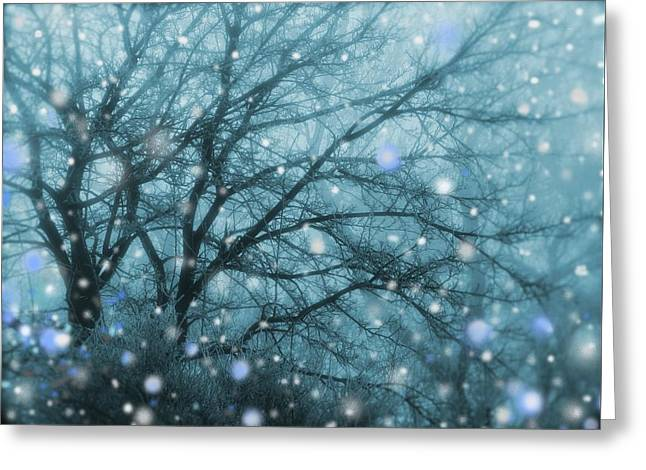 Winter Evening Snowfall Greeting Card
