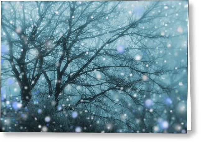 Winter Evening Snowfall Greeting Card