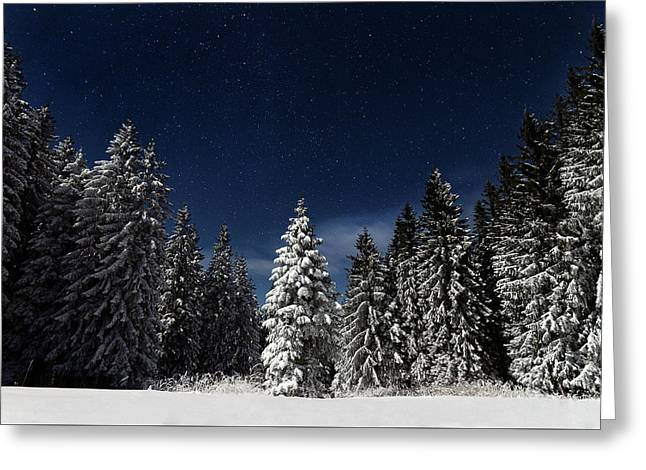 Winter Fairytale Greeting Card by Paul Itkin
