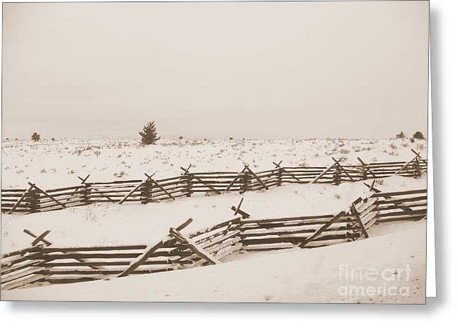 Winter Fence In Oregon Greeting Card by Carol Groenen