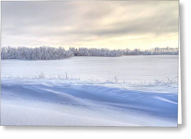 Winter Field Greeting Card