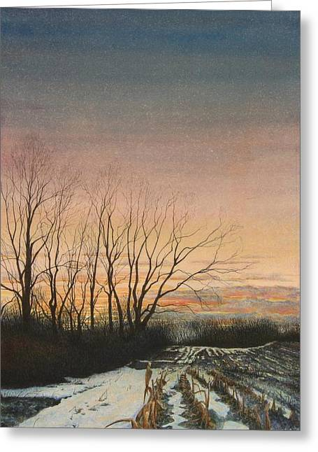 Winter Field Greeting Card by Stephen Bluto