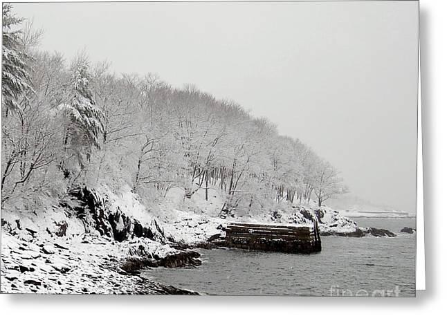 Winter Finery Greeting Card by Faith Harron Boudreau