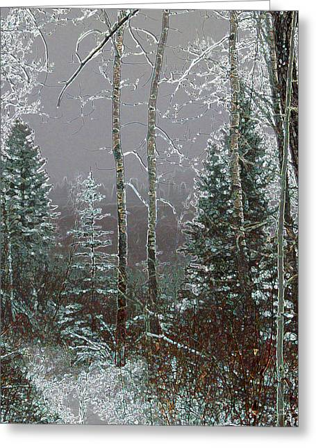 Winter Fog Greeting Card by Stuart Turnbull