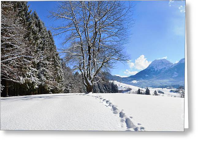 Winter Forest And Mountains Panorama Greeting Card by Sabine Jacobs